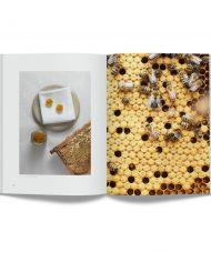 09 Gastrologik_bok